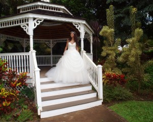 wedding photography on Maui, Wedding Gown Portrait