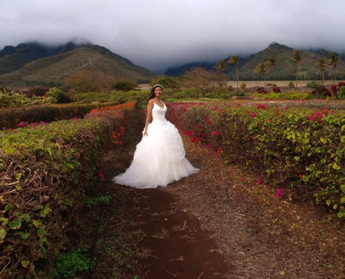 Wedding Gown in the Flowers