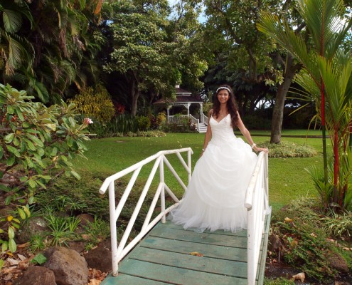 Maui Tropical Plantation Photography