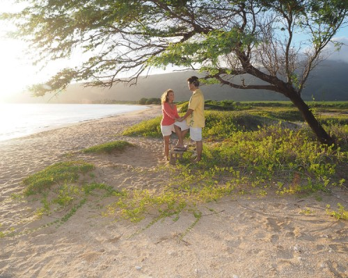 Couple Under Tree at Maui Beach